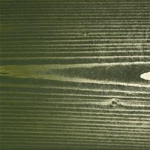 «Папоротник» Колер для масла и воска - фото 5126